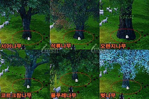 Архейдж какие деревья лучше сажать 20