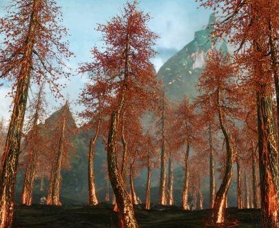 Деревья в ArcheAge – Добыча дерева: грозовое, огненное, акхиумное